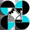PCIEERD Logo